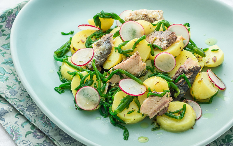 Salade met sardines